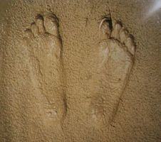 Footprints in the sand by bolaker