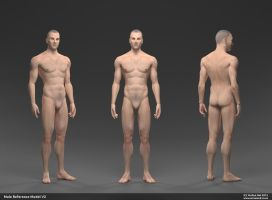 Male Human Reference by YeshuaNel