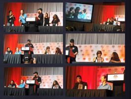 Mass Effect Voice Actors Panel: Denver Comic Con by GSJennsen