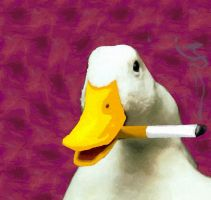 Smoking Duck by Bongwater-bandit