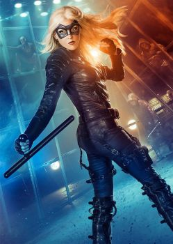 The Black Canary by TheElectrifyingOneHD