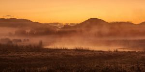 Golden Fog by Questavia