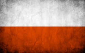 http://th02.deviantart.com/fs41/300W/i/2009/024/a/8/Poland_Grungy_Flag_by_think0.jpg