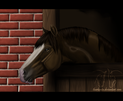 Stable by Tharkenta