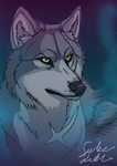 .Tsume. by TheMysticWolf