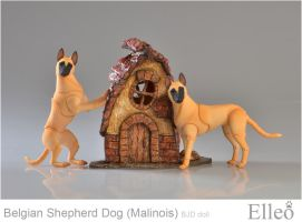 Malinois 01 by leo3dmodels