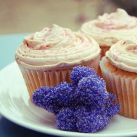 cuppycakes by chpsauce