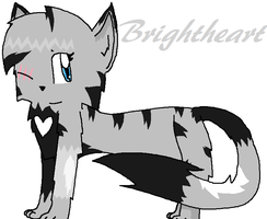 Gift for Brightheart by TeamRocketsPikachu