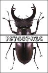 Lucanus ID by psygothic