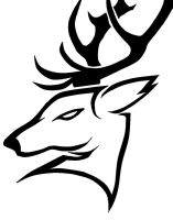Stag Head by Theneck4544