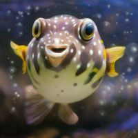 fugu by photoplace