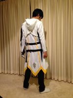 Elsword - Raven Blade Master Cosplay Back View by GameBoy224