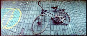 mauls bicycle by scleia