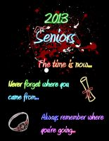 Seniors 2013 by Drake-Darkess