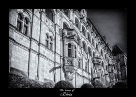 Blois III by calimer00
