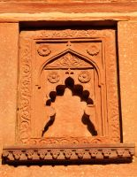 Agra Fort wall detail 1 by wildplaces