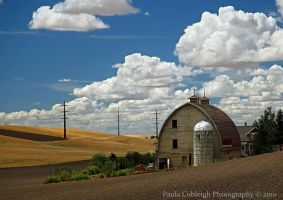 Palouse Barn II by La-Vita-a-Bella