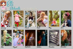 2013 in Review by Eli-Cosplay