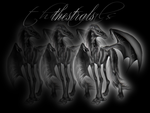 Thestrals by pandabear18788