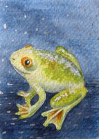 ATC: Frog in Pool of Stars by Athalour