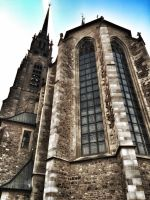 Brno - St P and P cathedral - up and close by bdx