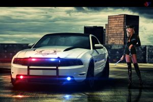 Ford Mustang Police by AcceptDesign