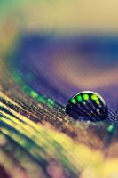 Droplet II by markie2k