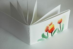 Sketchbook of Tulips by corelila