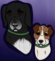 Plague Dogs by LaconicLyra