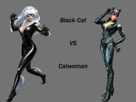 Black Cat VS Catwoman by Lord-Lycan