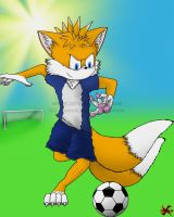 Soccer Miles by JazzaX