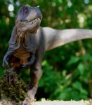 Gotcha by Gorgosaurus