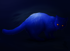 Blue Cat by Lizandre