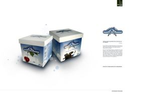 revised packaging 2 by GerCasey