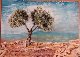 olive tree by ErvinOgrasevic