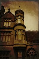Tyntesfield, Gothic Victorian mansion, Somerset by katmary