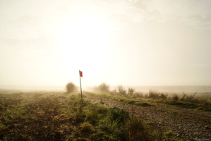 France, Oise Brume 5 by orkcreation