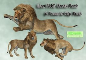 Lion PNG Stock Pack by Roys-Art