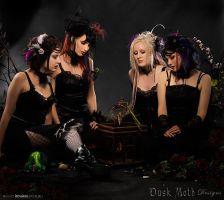 Faerie fantasy by Duskmoth