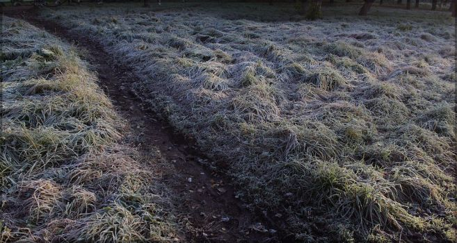 first frost by KaShiDo-ON-Art