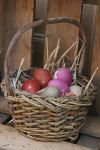 Easter Stock 18 by Malleni-Stock