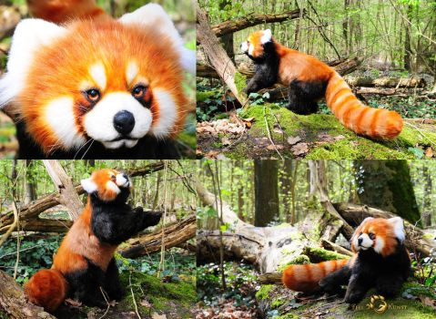 Poseable Art Doll, Red Panda by FellKunst