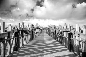 Wreck Wood Bridge - Flanders by Riddseh