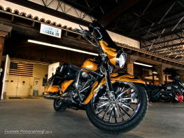 Hot H-D by Swanee3