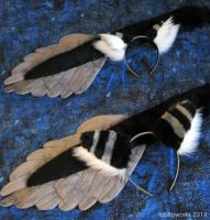 Gryphon Ear/Tail Set by LobitaWorks