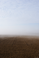 France, Oise Brume 7 by orkcreation