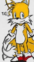 Tails the Fox by champion1012