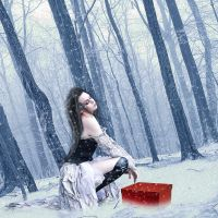 .Nevicata. by Flore-stock