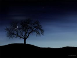 Tree and Moon by softshapeart