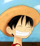 One Piece - Luffy by spacecookiejr